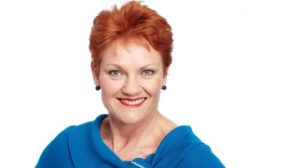 One Nation's push for coal fire power, Bradfield scheme & a Royal Commission into Family Law