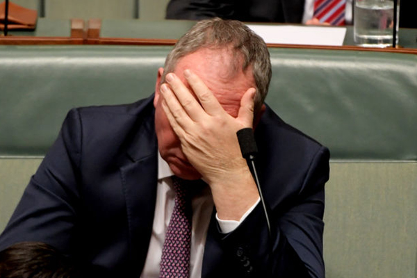 Article image for 'It's not that I'm skint…': Barnaby Joyce insists he's not crying poor on $211,000 a year