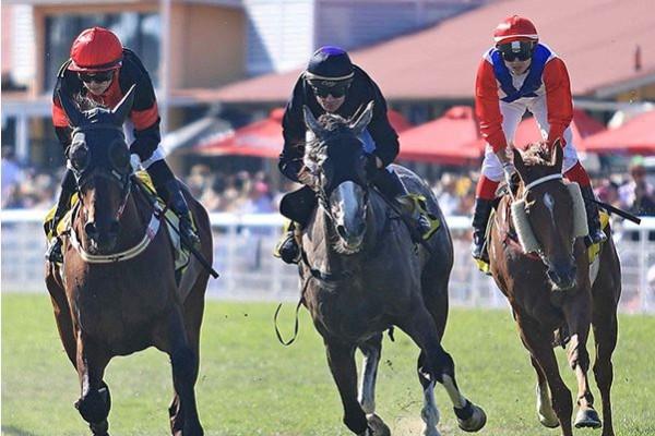 Deagon Racecourse on track for major upgrade