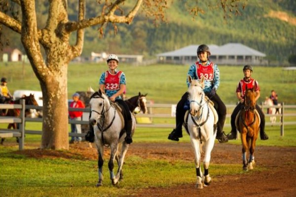 Riders saddle up for the Tom Quilty Gold Cup