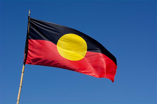 Article image for Liberal Senator speaks out against Scott Morrison's planned indigenous referendum