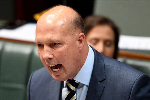 Article image for 'Bizarre tactic': Dutton rips into Labor for flip-flopping over foreign fighter laws