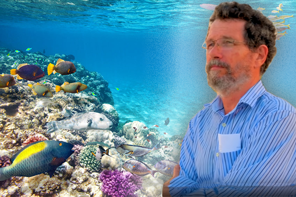 'Triumph of misinformation': Professor slams Great Barrier Reef 'hoax'