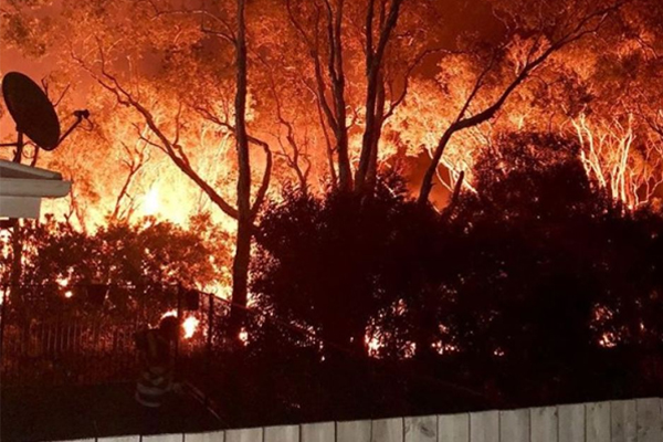 Article image for Bushfire updates: Rolling coverage from across NSW and QLD