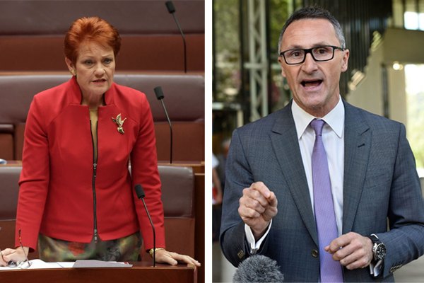 Article image for Pauline Hanson rips into Richard Di Natale for blaming bushfires on climate change