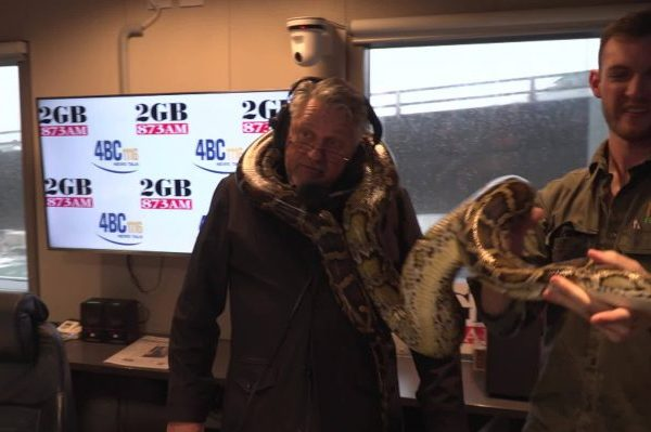 WATCH   Ray Hadley meets Fluffy… the gigantic Burmese python