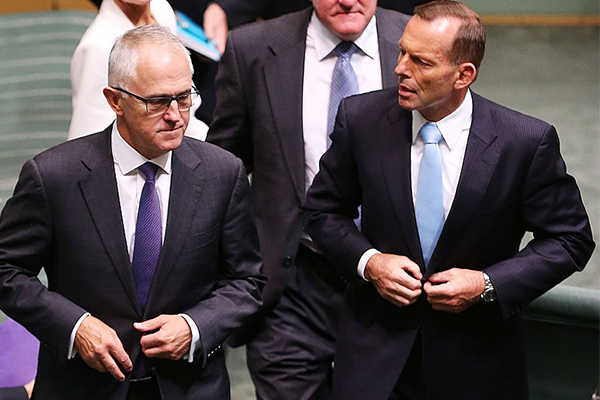 Tony Abbott blames Malcolm Turnbull for his demise as leader