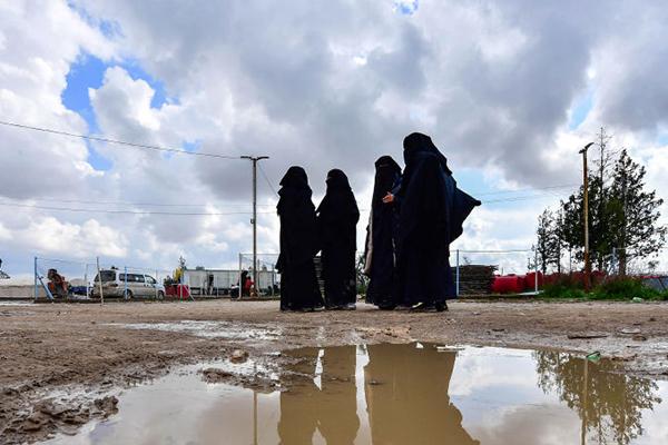'Don't cry me your tears': Rita Panahi slams fresh plea to bring IS brides home