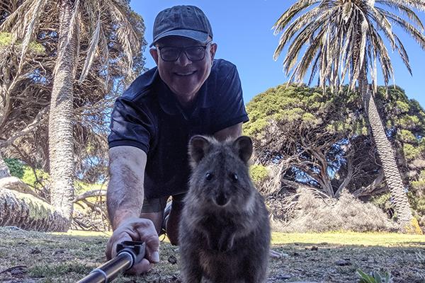WATCH   John Stanley nails the perfect quokka selfie