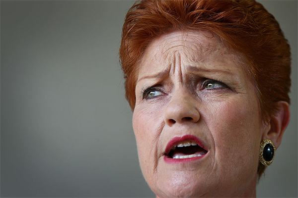 Article image for 'I want to clean up the act of the whole damn lot of them': Pauline Hanson
