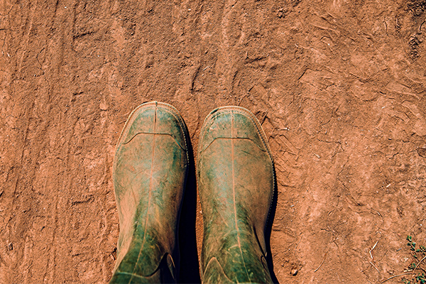 Article image for 'Greatest act of bastardry': QLD farmers stripped of drought support
