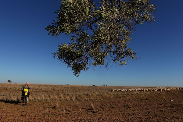 Liberal MP rubbishes plan to pay farmers to leave the land