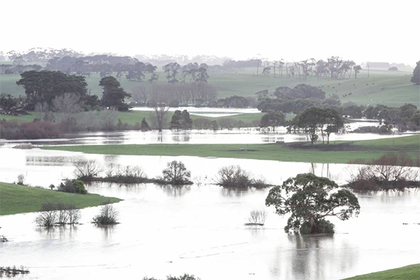 Article image for Drought funding allocated to region that isn't even in drought