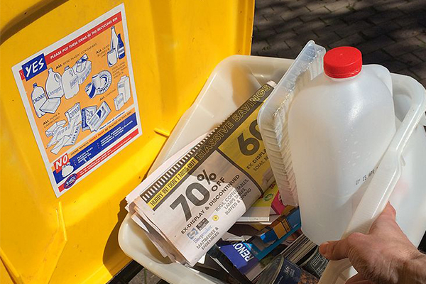 Article image for Expert rubbishes plan to introduce up to six household bins