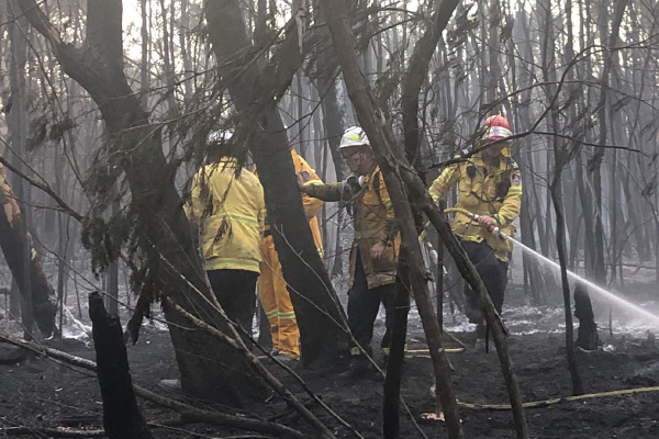 'These fires are suspicious': RFS Deputy Commissioner's astonishing revelation