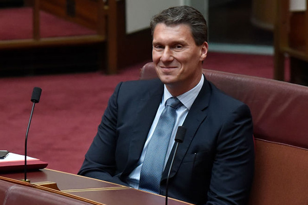 'It's time for me to do something else': Cory Bernardi ready to farewell politics