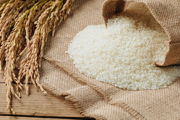 Article image for Rice jobs cut amid crippling drought