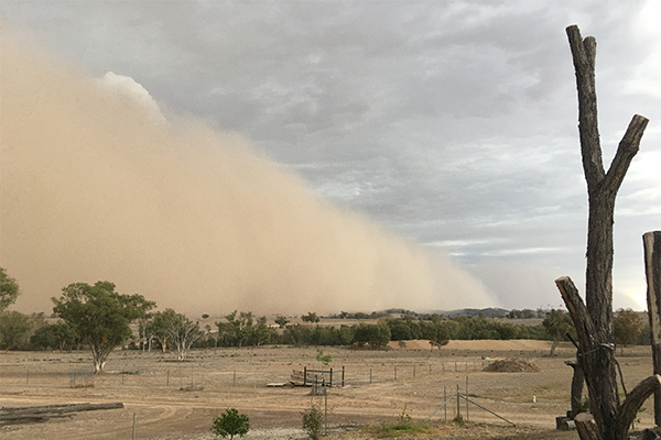 Article image for Dust storms sweep across NSW and Queensland