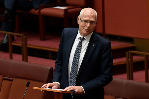 Article image for Jim Molan makes long-awaited return to the Senate