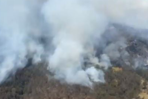 Workers' rights during bushfires