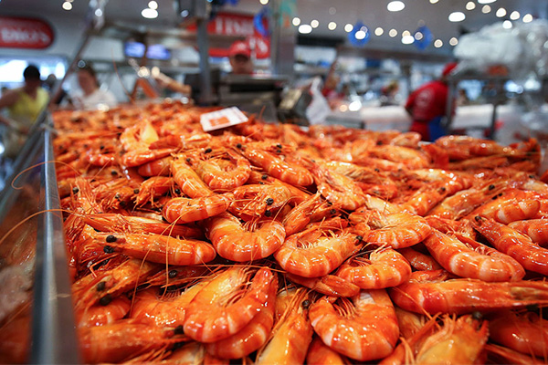 Article image for Prawn prices skyrocket this Christmas amid crippling drought