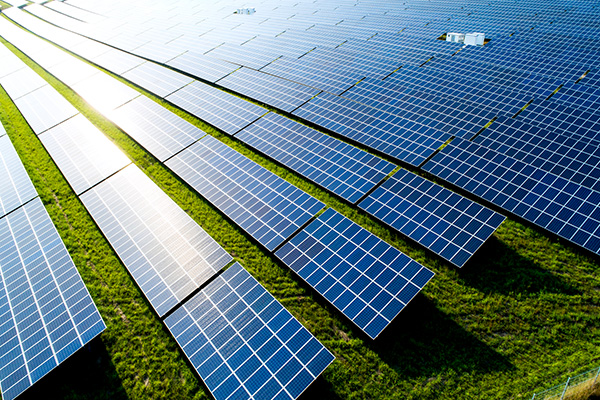Renewable energy expected to drive down power prices