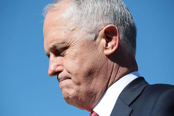 Rita Panahi slams 'absolutely delusional' Malcolm Turnbull