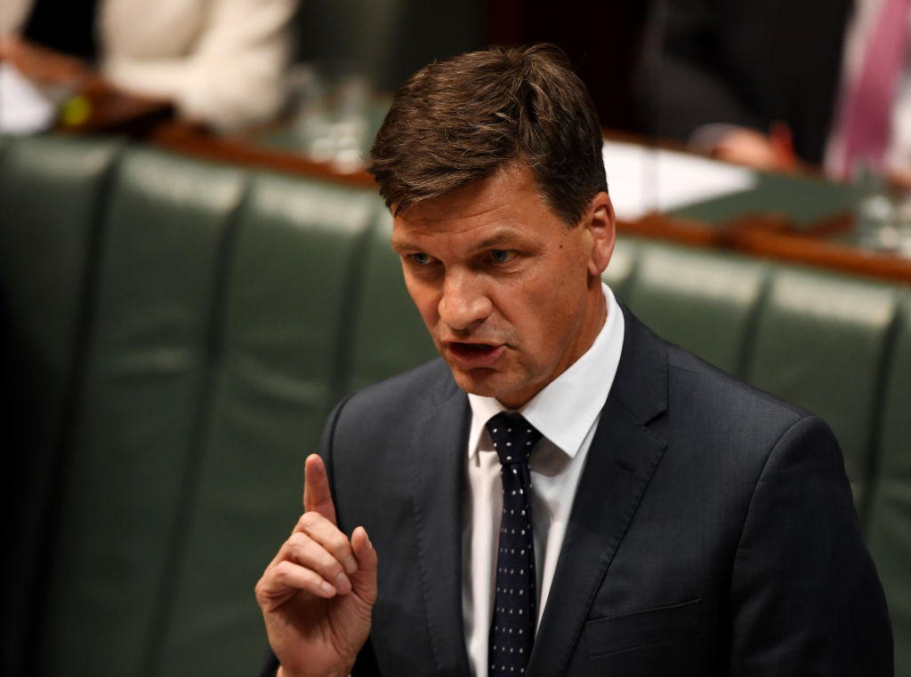 'Absolute rot': Energy minister defends emissions reduction numbers