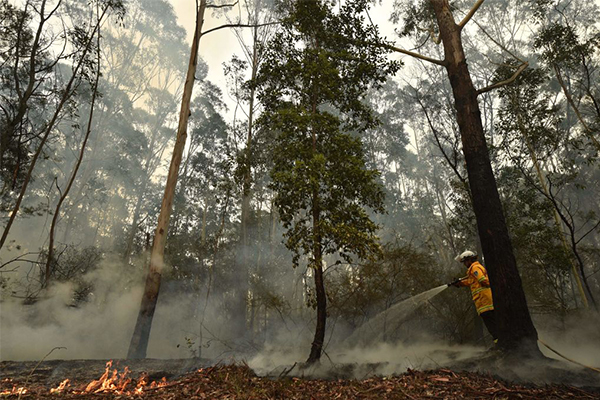 Article image for Property and lives at risk as Australia braces for extreme fire danger