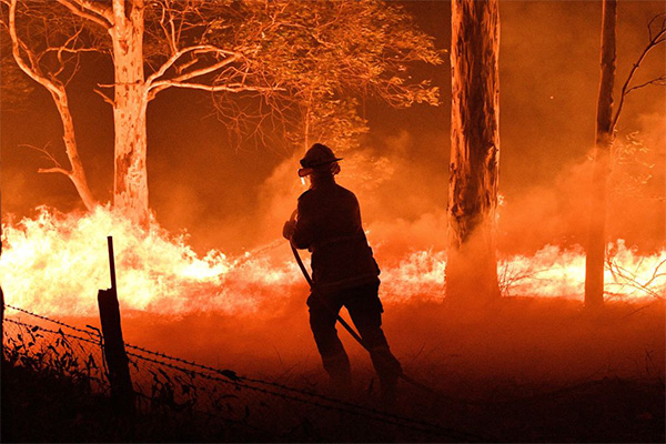 Article image for Education Minister calls for cultural burning to tackle bushfires