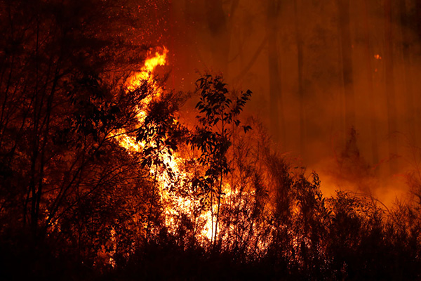 Article image for 'This is our home!': Rural resident fears his town has been forgotten as bushfire threat looms