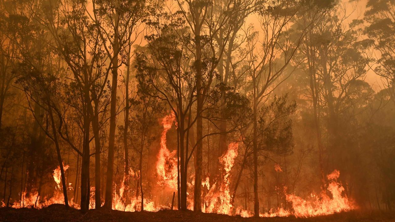 Rugby League wraps its arms around bushfire-ravaged communities