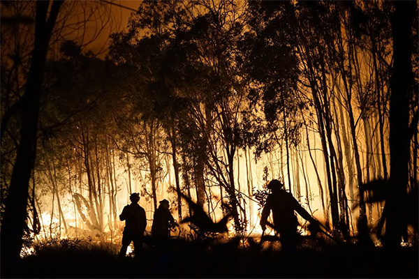 Article image for QLD firefighters opposing ticker-tape parade to honour them