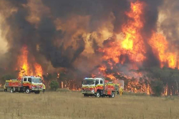 Article image for Rural towns highlight cross-border failures: Bushfire Royal Commission begins