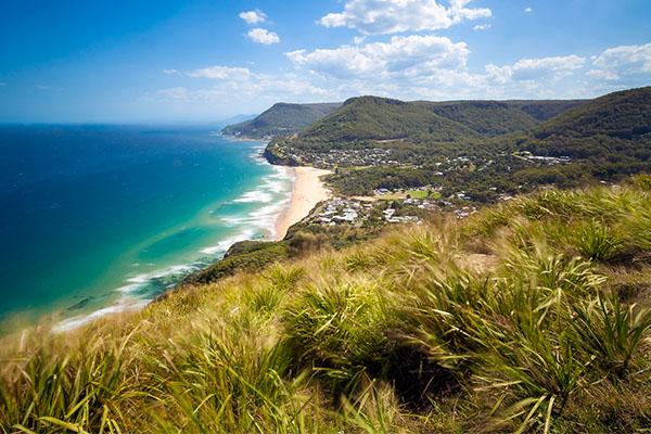 Article image for Sydneysiders encouraged to visit South Coast after devastating bushfires