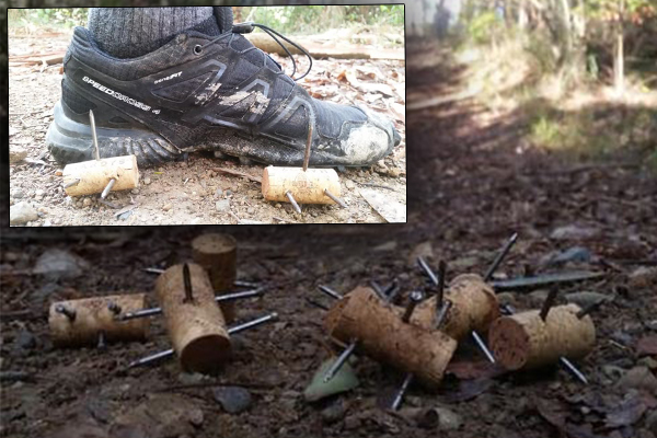 Gruesome booby traps found hidden on running trail
