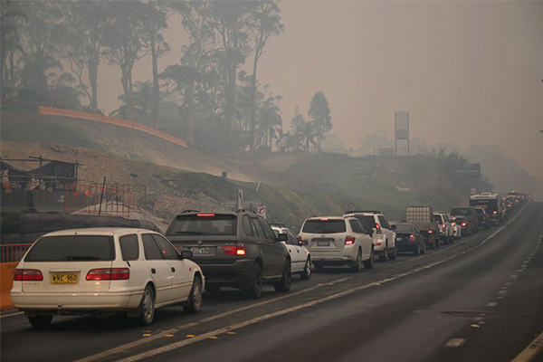 Article image for Tens of thousands flee NSW South Coast in biggest evacuation in Australian history