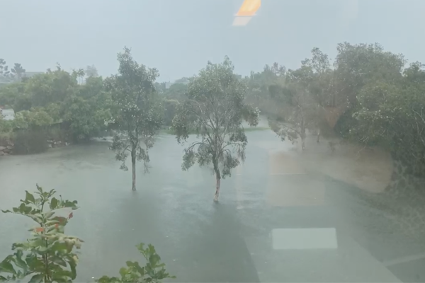 WATCH | Ray Hadley films flooding at 4BC studios