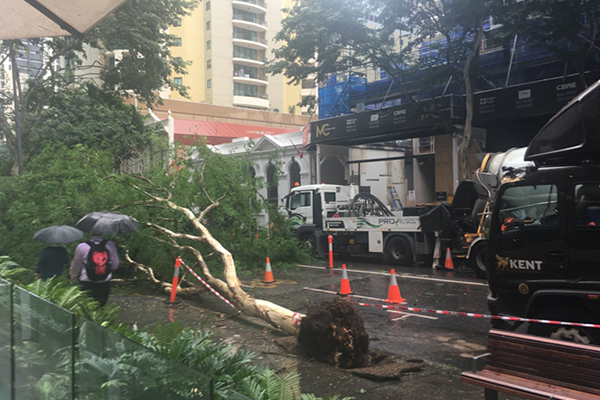 Brisbane CBD street closed as wild weather continues to wreak havoc