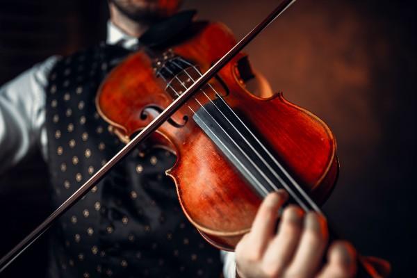 Music education 'essential for cognitive development': Dr Anita Collins