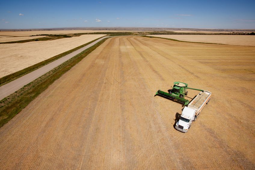 Article image for GrainCorp seeks outcome 'more favourable than threat of tariffs'