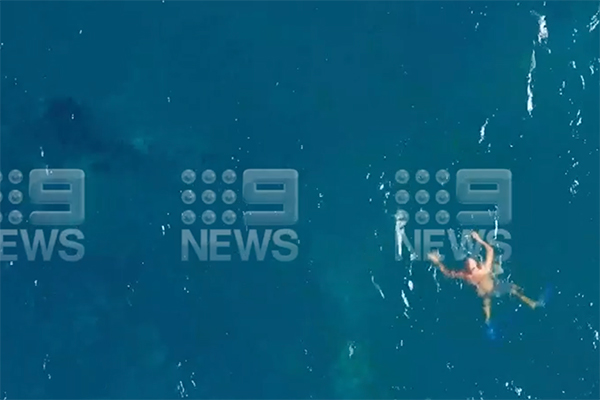 Article image for Ben Fordham clashes with Minister over Aussie hero who saved a young whale