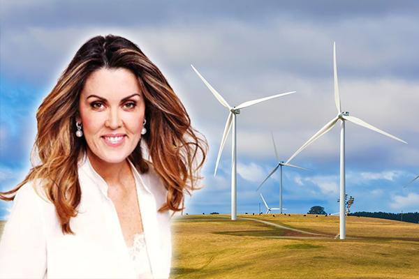 Peta Credlin blasts Labor's energy policy olive branch as 'leftist rubbish'