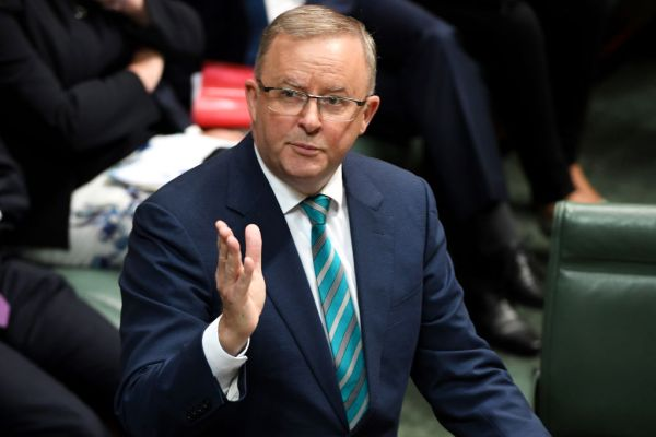 Article image for Anthony Albanese insists Prime Minister take responsibility on border closures
