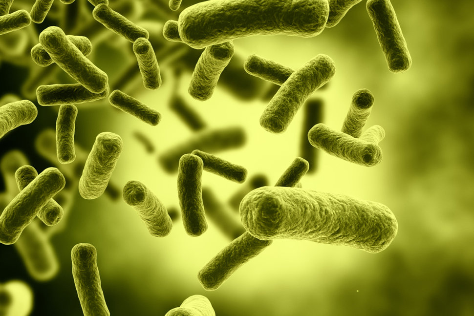 Fighting superbugs with artificial intelligence