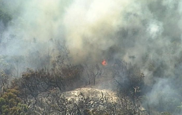 State Opposition hits out at fire response on Fraser Island