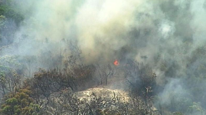 Article image for Fraser Coast mayor welcomes review into bushfire ravaging the island