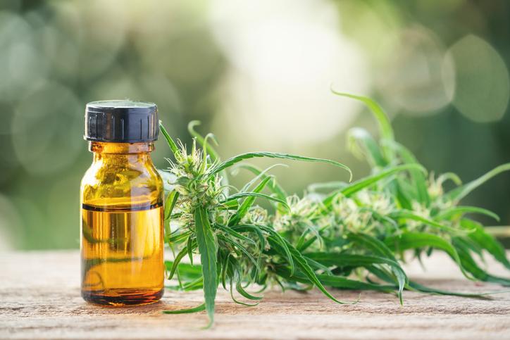 Illicit drug becoming commonplace medical prescription