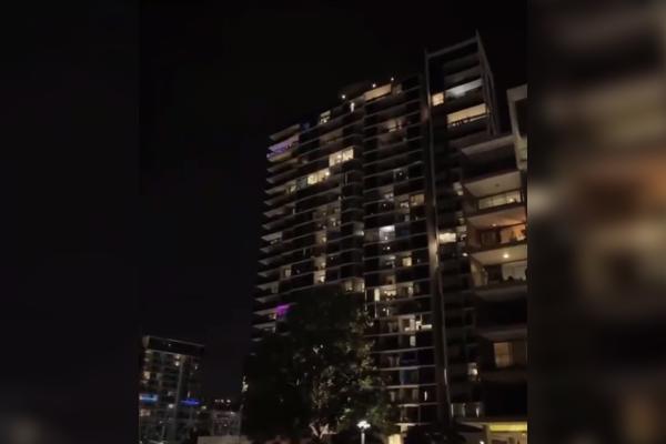 Newstead nutbushes through Brisbane lockdown
