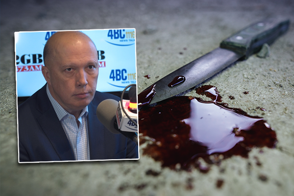 Peter Dutton hits out at 'hand-wringers' sugarcoating youth gang violence